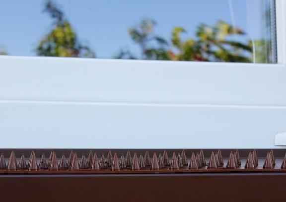 listwa z plastikowymi kolcami przeciw ptakom na balkon 88015049